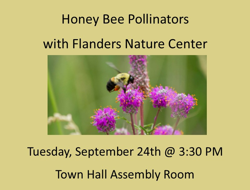 Honey Bee Pollinators w/Flanders Nature Center (Gr  K & Up